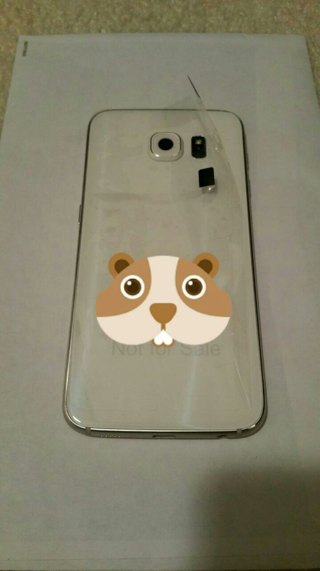 Are-these-the-Galaxy-S6-and-S6-Edge-3