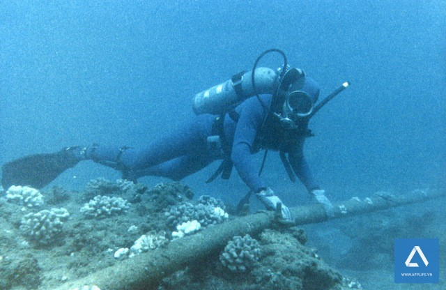 Một tuyến cáp quang quốc tế dưới biển (ảnh Internet)