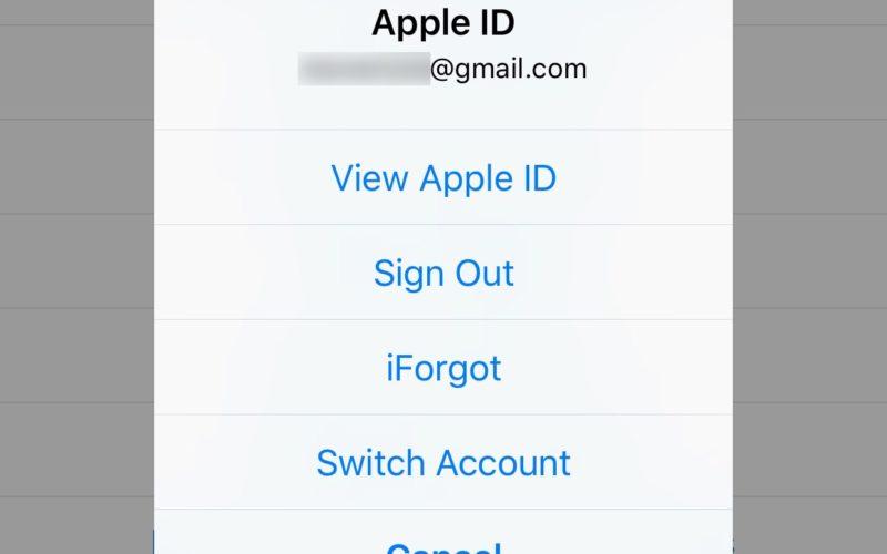 Nếu bạn có nhiều hơn một tài khoản App Store như tài khoản Mỹ (US), Việt Nam (VN) và máy đã jailbreak thì tiện ích StoreSwitcher sẽ làm bạn hài lòng.